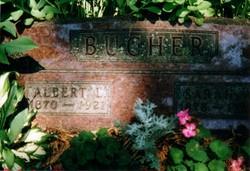 Albert L Bucher
