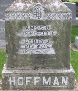 Amos D. Hoffman