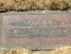 Martin James Barnett