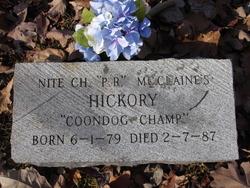 Hickory Dog