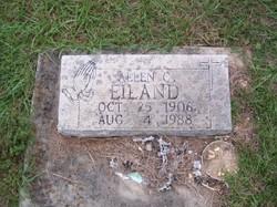 Allen C Eiland