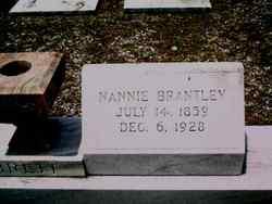 Nancy E Nannie <i>Brantley</i> Brett
