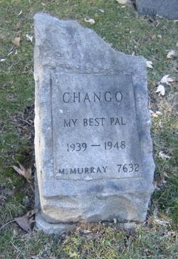 Chango -------