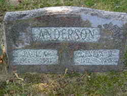 Paul A Anderson