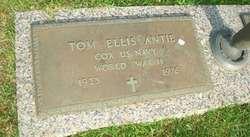 Tom Ellis Antie
