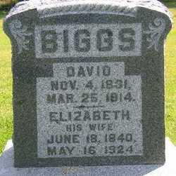 David Biggs