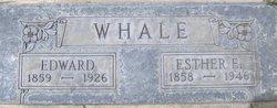 Edward Whale