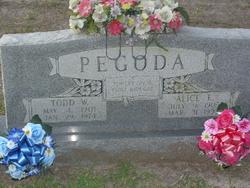 Todd W. Pegoda