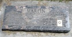 Sophronia <i>Moore</i> Martin