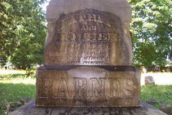 Artemissia <i>Bowman</i> Barnes