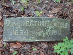 Sara Mortimer <i>Harrison</i> Agnew