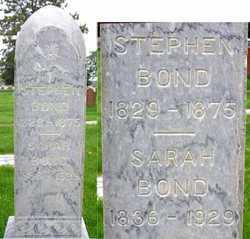 Stephen Alexander Bond