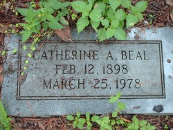 Catherine A Beal