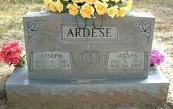 Joseph C. Ardese