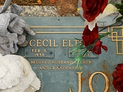 Cecil Elton Johnson