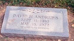 David H Andrews