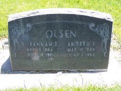 Andrew F Olsen