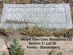 Alice <i>Duesenberry</i> Cherrington