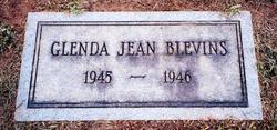 Glenda Jean Blevins