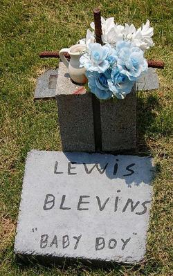 Lewis Blevins