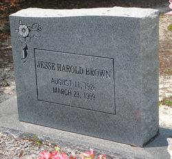 Jesse Harold Brown