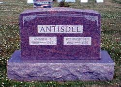 Wellington Leslie Antisdel