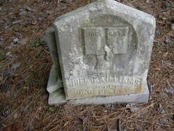 Joel C. Williams