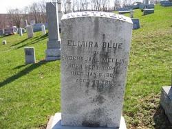 Elmira Blue