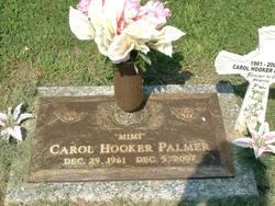 Carol Ann <i>Hooker</i> Palmer