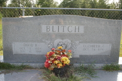 David Berrien Blitch