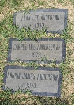 Alan Lee Anderson