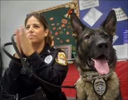 Sam Diesel Police Dog