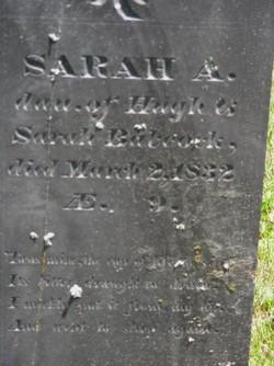 Sarah A Babcock