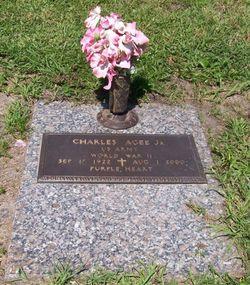 Charles Agee, Jr