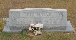 Fay <i>Seymour</i> Brizendine
