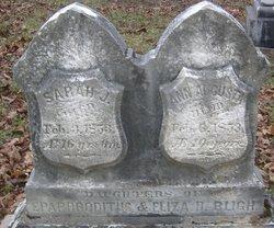 Ann Augusta Bligh