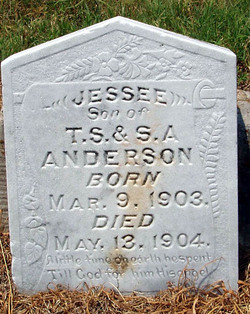 Jessee Anderson
