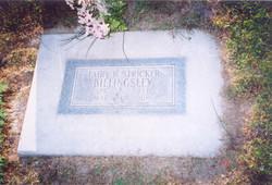 Fairy Bell <i>Stricker</i> Billingsley