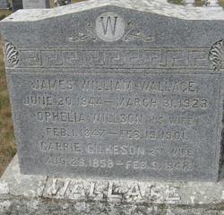 Ophelia <i>Willson</i> Wallace