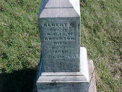 Albert G. Anderson