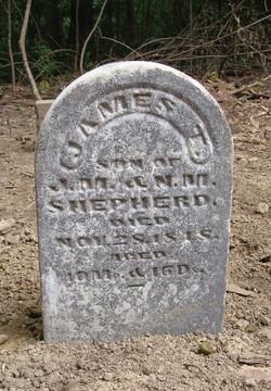 James T. Shepherd