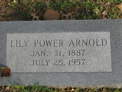 Lily Mrs. L.B. <i>Power</i> Arnold