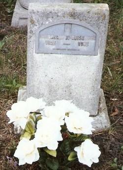 Laura Jane Reese