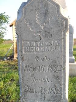 Antonia Heideman