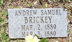 Andrew Samuel Brickey