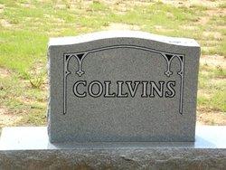 Billy Wayne Collvins
