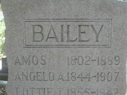 Amos Bailey