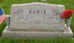 Joyce Barbara <i>Langley</i> Adair