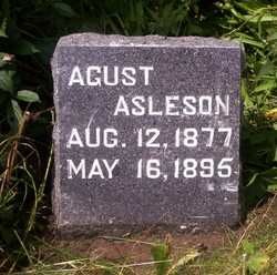 August Asleson