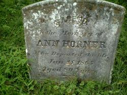 Ann Horner